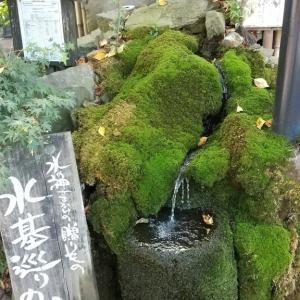 阿蘇神社に行きました🎵その①