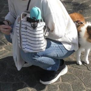 ニコちゃんとお散歩しました (^^)v