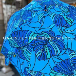 素敵すぎる日傘