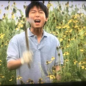 田中邦衛について、ごくうすく浅く