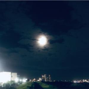 「月がキレイですね」なーんつって