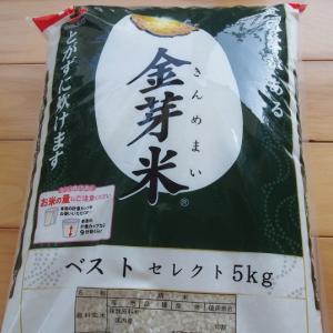 家族で摂りたい免疫ビタミン!栄養価の高い金芽米を食べ始めました。