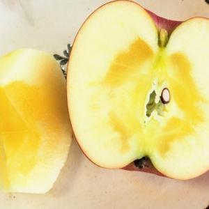 どこが訳あり?糖度13度以上の「さんフジ」りんごが届きました。