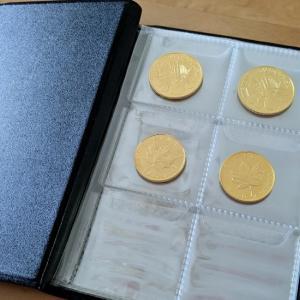金貨はコインアルバムに入れて収納しています。
