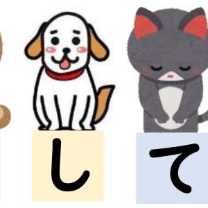 Diary10/30~11/5 「あなたは動物を飼ったことがありますか?