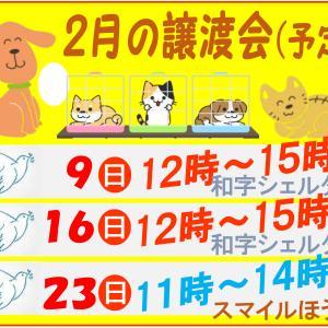 Humane12 負けるな がんばれ 青い鳥!