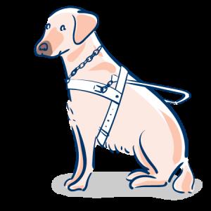 Humane㉞ 「犬+人+お散歩=幸せ」の法則