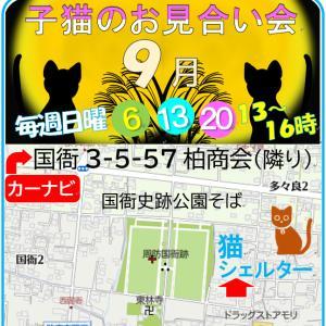 Diary9/2~8 諦めるなニッポンの未来!