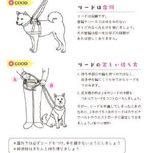 青い鳥のマニュアル『犬を迎えたら』②