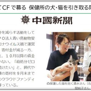 Diary9/8~14 中国新聞の応援と青い鳥の力不足