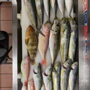 宮本君シロアマダイ1.5kgゲット、夏の海に癒される。