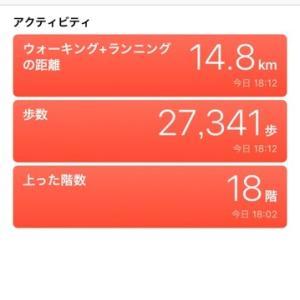 京都の旅 2019 「27341歩」