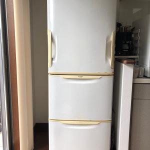 冷蔵庫が来たーーー!!