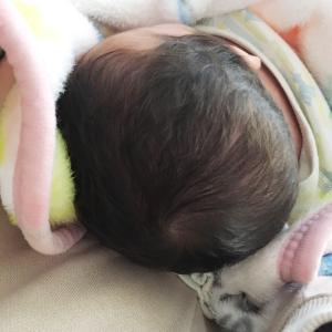 生後50日♡双子の体重