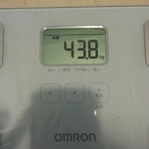 8/17(月) 43.8kg