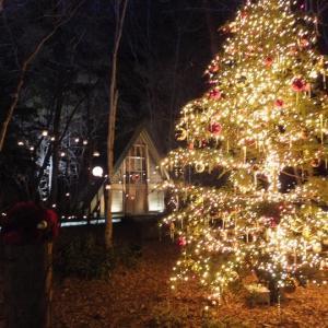 軽井沢高原教会-クリスマスイルミネーション2019を見て来ました。