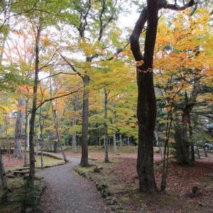 浅間神社の紅葉