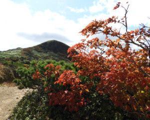 畚岳の紅葉から、八幡平の草紅葉