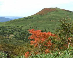 三ッ石山の紅葉真っ盛りです