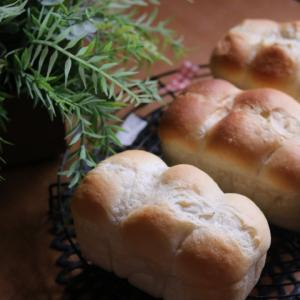 werry-bread天然酵母パン教室(マスカルポーネとはちみつの食ぱん)  62回