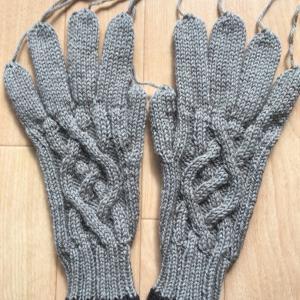 手袋用アラン模様を考える