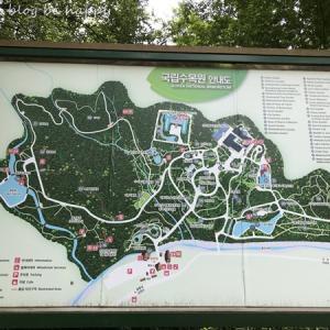 緑いっぱいの光陵樹木園へ@京畿道・抱川