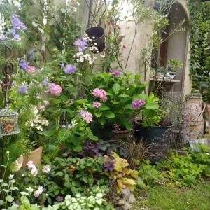 きちんと植えた花壇