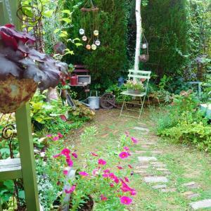 芝刈りとイマ庭