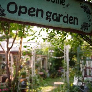 お盆明けの庭*ナチュラルガーデン