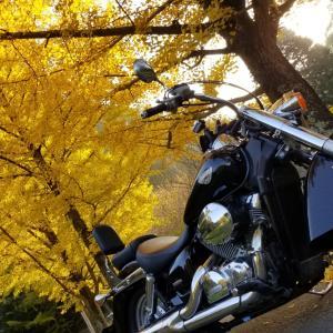 バイクで紅葉とラーメンツーリング IN 高知県『美味しんぼ山岡』