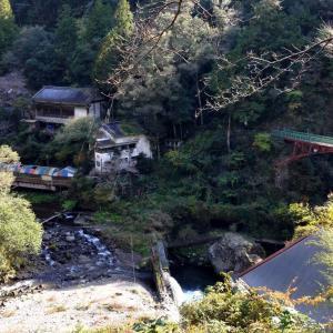 廃墟と紅葉のコラボスポット高知県の『中追渓谷』