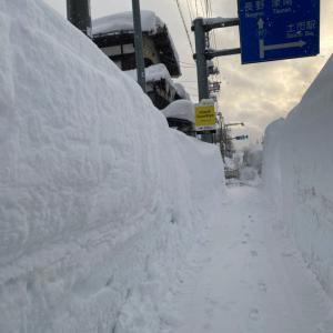 正しく豪雪地帯