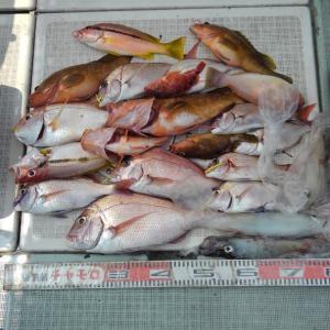 土用の日、鯛ラバ釣り