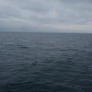 突然の雨、鯛ラバ釣り