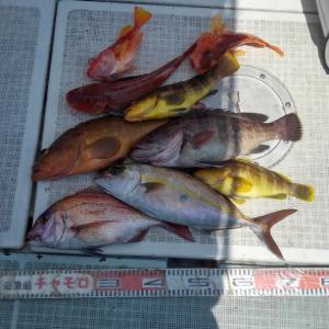 ファミリー、鯛ラバ釣り出港