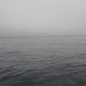今日もイカが、鯛ラバ出港