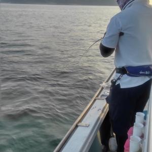 今日から7月、タチ釣り出港
