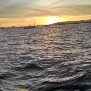 風あるぞ、タチ釣り出港