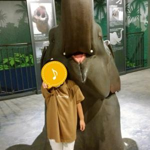 一日遊べる 円山動物園