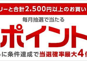 10/31まで楽天カードを2500円以上利用すると抽選で期間中の利用合計金額の楽天スーパーポイントプレゼントのキャンペーンがお得