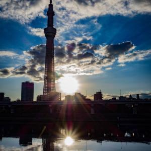 【272】台東区花川戸 スカイツリーを照らす新春の光