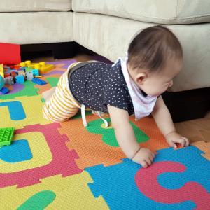 生後6ヶ月&4歳の予防接種と各種健診