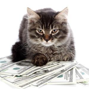 人は、お金についてあまりにも無知すぎる・・・