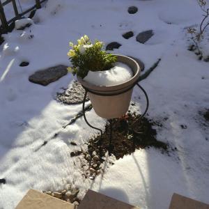 急な雪景色