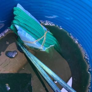 藍染め インディゴ 手拭い 雪花絞り 試作を