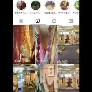 草木染めインスタレーション作品 Instagramにアップしました