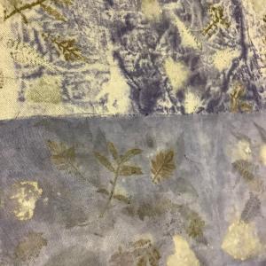 草木染めエコプリント サンプル作り ユーカリ ⑦