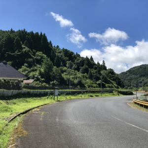 田舎のお山