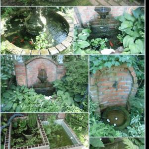 今日の庭から…噴水と水辺で涼を~…。