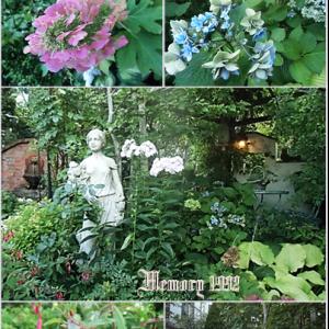 秋めいた庭とドールチェアー他